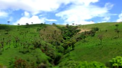Moar tilt shifting fun!