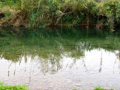 IMG_2706 (Ezniter) Tags: waterfall cascada huasteca sanluispotosi tamul tamasopo