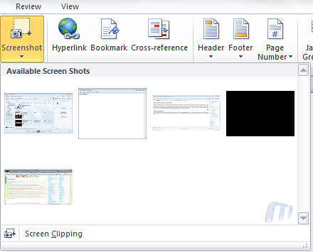 Office 2010 Screen capture