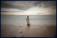 Spittal Beach (Trevor Weddell) Tags: beach berwick groyne spittal