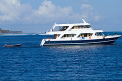 DPP_boat charters3