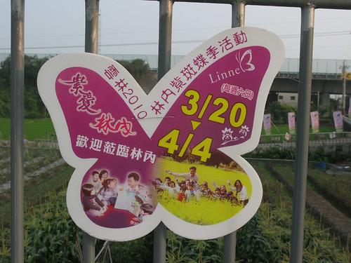 20100320林內紫斑蝶季~紫愛林內-1