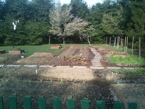 Mrs. Obama's Garden