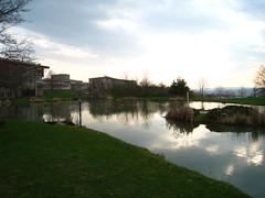 Muller Pond