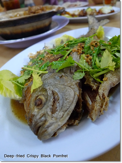 Fried Pomfret Fish