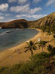 P4021161 (ymeng00) Tags: beach volcano hawaii oahu crater hanaumabay