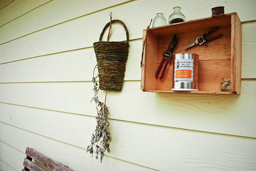 april :: {weekend snapshot} urban homesteading and such...