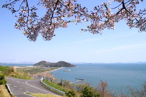 青佐山御台場展望台からの眺め