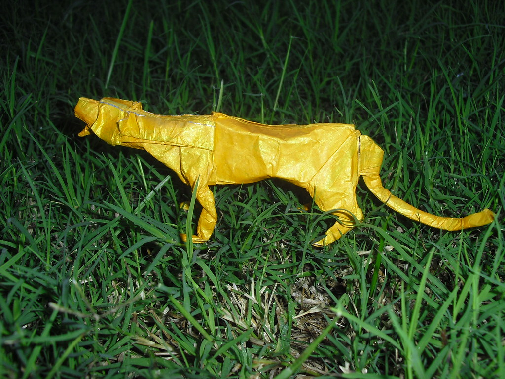 The Worlds Newest Photos Of Cheetah And Origami