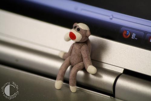110-sock monkey 1