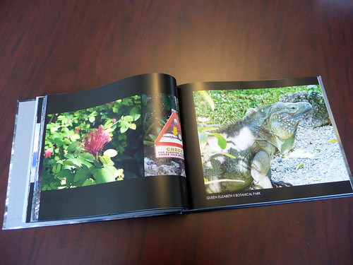 MyPublisher... Photo Finish Cover Review