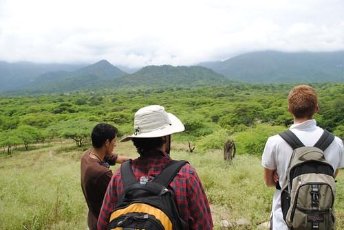 Tinajores view