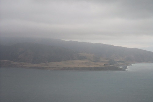 flying into Wellington