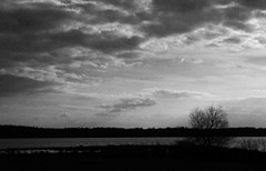 in the mood (bdaryle) Tags: blackandwhite bw nature clouds landscape sony bn nubes inthemood brandondaryle bdaryle imagesbybrandon