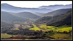 Tra valli e colline di Maremma - Valleys and hills of Maremma (Jambo Jambo) Tags: italy panorama landscape nikon italia hills tuscany toscana grosseto colline valleys maremma valli vetulonia buriano d5000 jambojambo