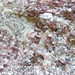 Rock365 : 22 05 2010 : Hexagonite