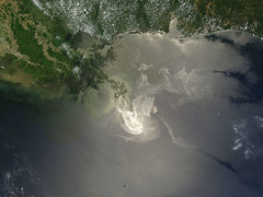 Oil Slick in the Gulf of Mexico May 24th View