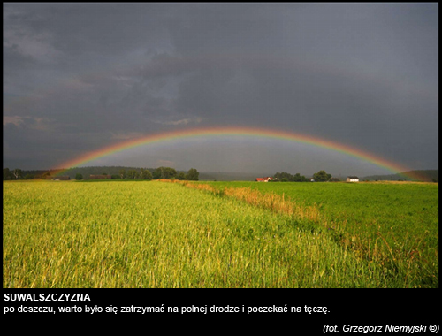 Grzegorz-Niemyjski-Krajobraz-FotoGeA2-foto-2