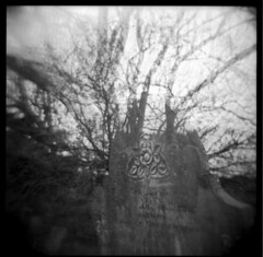In Bloom (-kreuzberg-) Tags: ireland bw white black 120 grave self square coast ruins exposure north double retro plastic northern vignetting developed friary distorsion antrim 120n ballycastle 400s rollie bonamargy r09 treesholga