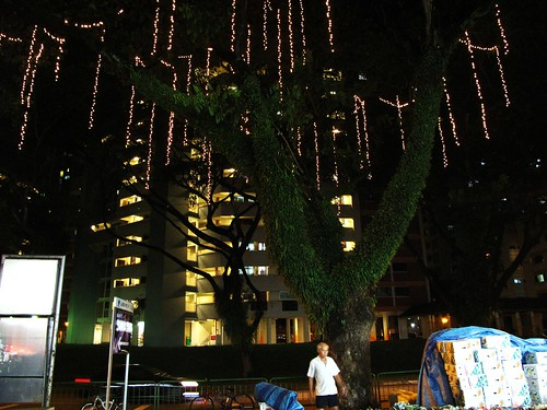 IMG_0107n Jurong West St 52