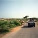 Humvee and Camel Sharing the Road Near Kismayo, Somalia