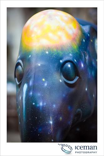 106-Cosmos