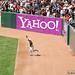 Carlos Gonzalez - Colorado Rockies vs. San Francisco Giants - 5.31.10