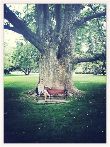 Abby under tree
