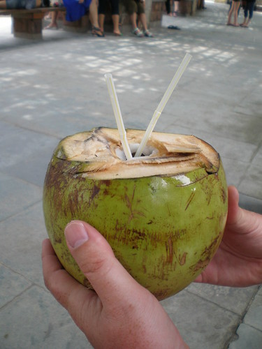 A young coconut is perfect as a cool summer drink!
