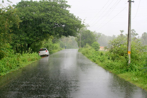 Monsoon Rains in Palakkad Kerala