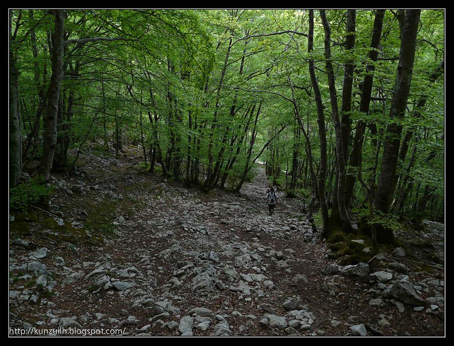 Aizgorri_114043