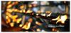 Oil lamps @ Kelaniya temple (teddy771) Tags: light heritage temple nikon bright buddha buddhist flash temples kalani srilanka pahana pahan d40x kalaniya