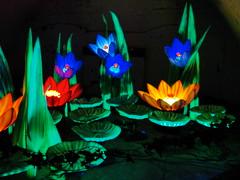 Nocturnal Garden Closer (agent j loves nyc) Tags: newyorkcity sculpture art lowlight modernart governorsisland conceptualart artfestival figmentfestival gregoryskolozdra lightedsculpture sonydsch20 sonyh20 figmentfest thenocturnalgardenpond