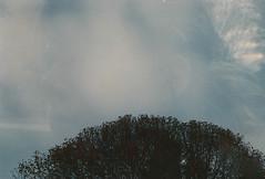 (kaleidoscope bones) Tags: trees sky selfportrait film me 35mm vintage hair doubleexposure konicka saraagnew