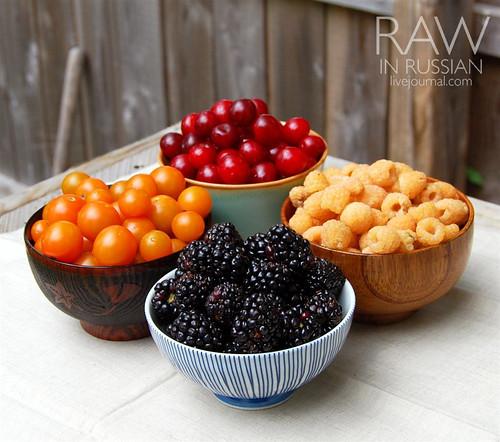 Virginia berries