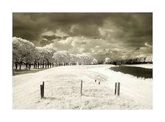 Trees, fence and canal (frank_bunnik) Tags: trees sky netherlands clouds fence river canal nederland wolken infrared lucht dijk brabant dike hek noordbrabant waalwijk drunen infrarood g10 copyrightfrankbunnik canong10
