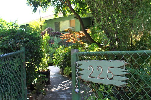Mongero Garden Front Yard Entrance
