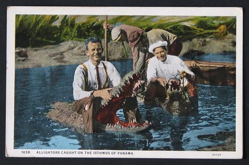Postcards 6-20-10 003