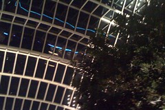 Kimmel Rooftop Garden