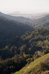 Big Sur Valley View Photo
