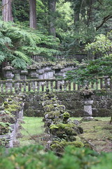 IMG_2621 (normafincher) Tags: japan nikko nikkonationalpark