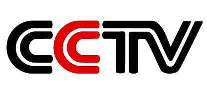 CCTV中国经济年度人物