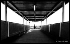 Homo urbanicus 19 (tany_kely) Tags: street bridge light shadow urban blackandwhite bw white man black france silhouette digital canon eos noir noiretblanc footbridge lumire nb ombre pont homo rue blanc passerby vienne homme poitiers passant urbain passerelle poitoucharentes 450d rebelxsi urbanicus