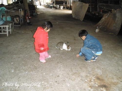 2009 12 20_27可達羊場.JPG