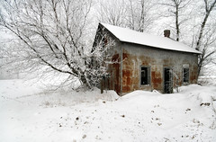 Abandoned In The Snow [explored} (red_dotdesign) Tags: trees winter house snow abandoned frost wonderland oncewashome