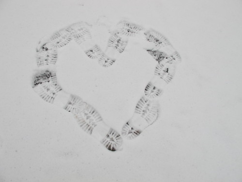 Sole Love in the Snow