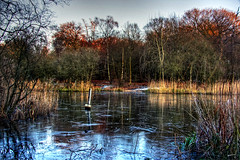 Frozen Epping (Joebelle) Tags: winter lake london ice water canon geotagged eppingforest frozen geotag epping 40d canon40d travelsofhomerodyssey