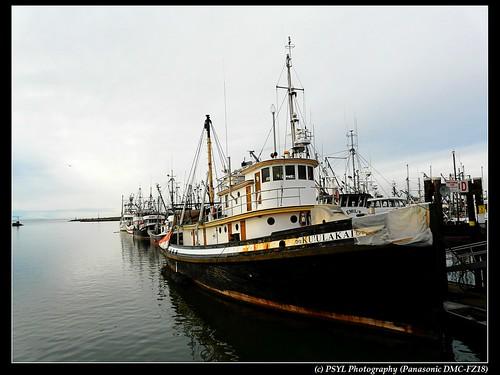 Ku'ulakai, Steveston Harbour