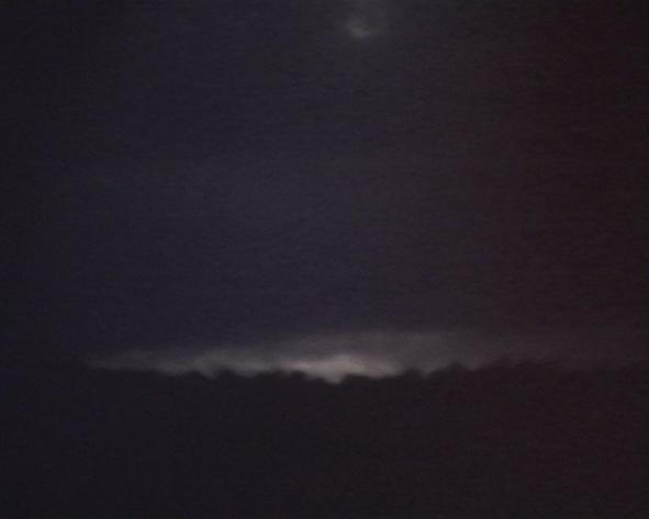 die_Nacht_ist_von_Dornen_erhellt_6_Bats_and_Swallows