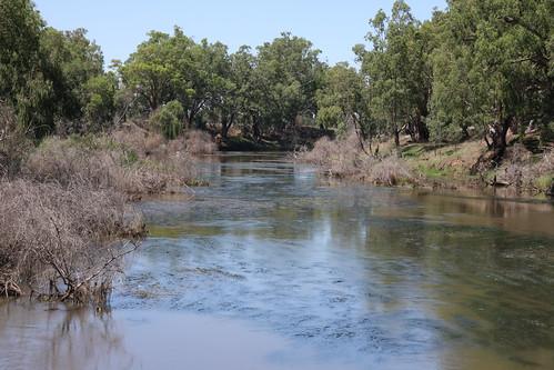 Macquarrie River